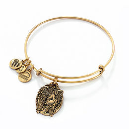 Alex and Ani Guardian of Answers Charm Bangle in Gold-Tone Brass